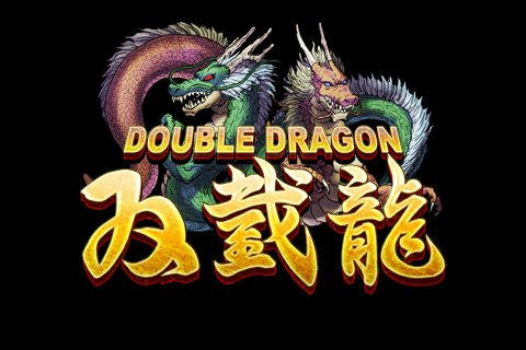 It S Been 20 Years Since Super Double Dragon Who Else Wants A